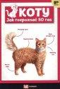 Koty. Jak rozpoznać 50 ras. Fakt - okładka książki