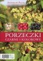 Porzeczki czarne i kolorowe - Stanisław - okładka książki