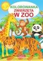 Kolorowanka. Zwierzęta w zoo - okładka książki