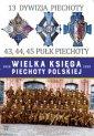13 Dywizja Piechoty. 43,44,45 Pułk - okładka książki