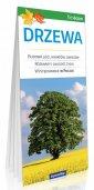 Drzewa - okładka książki