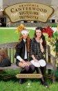 Szczęśliwa trzynastka Akademia - okładka książki